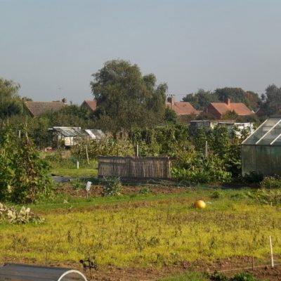 Allotments Greenhouses