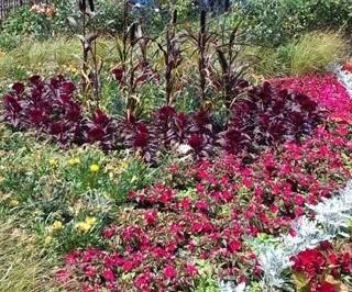 Princess Diana's Garden